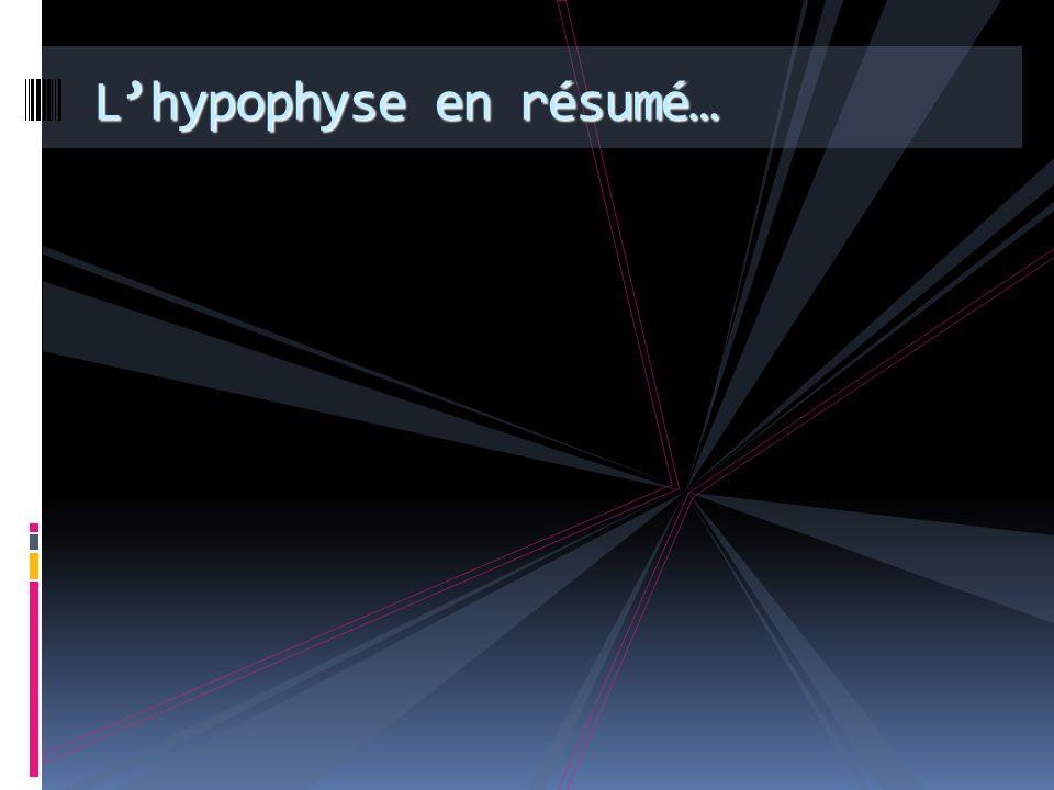 L'hypophyse en résumé…