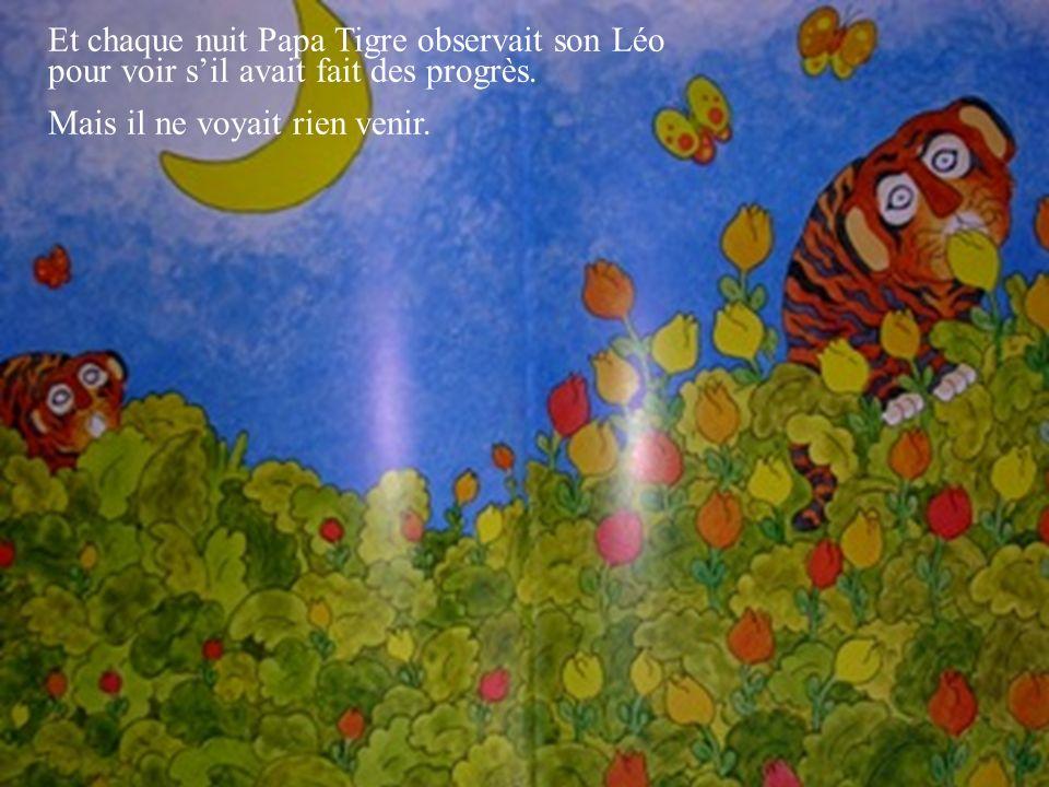 Et chaque nuit Papa Tigre observait son Léo pour voir s'il avait fait des progrès.