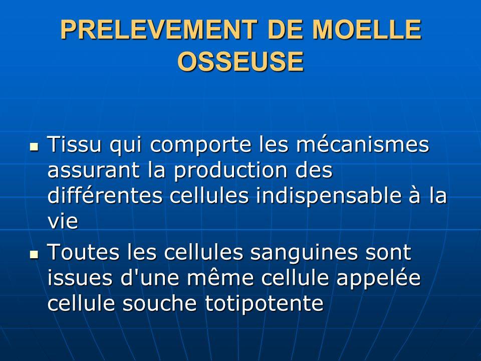 PRELEVEMENT DE MOELLE OSSEUSE