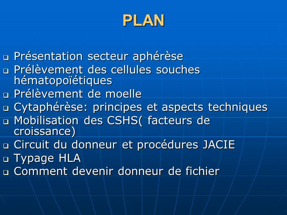 PLAN Présentation secteur aphérèse