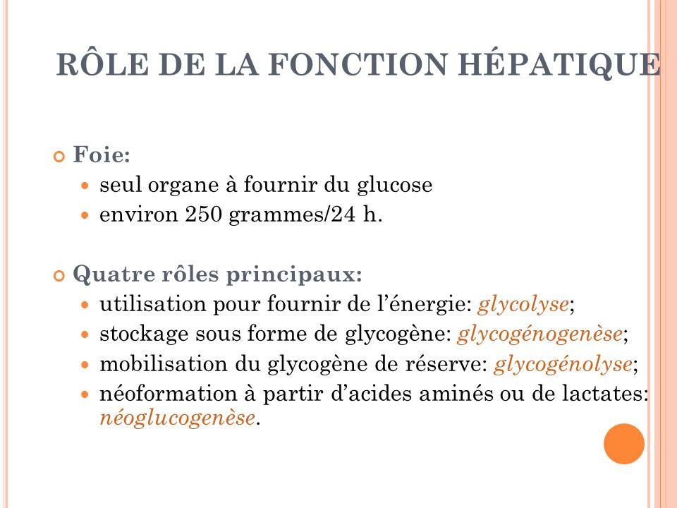 RÔLE DE LA FONCTION HÉPATIQUE