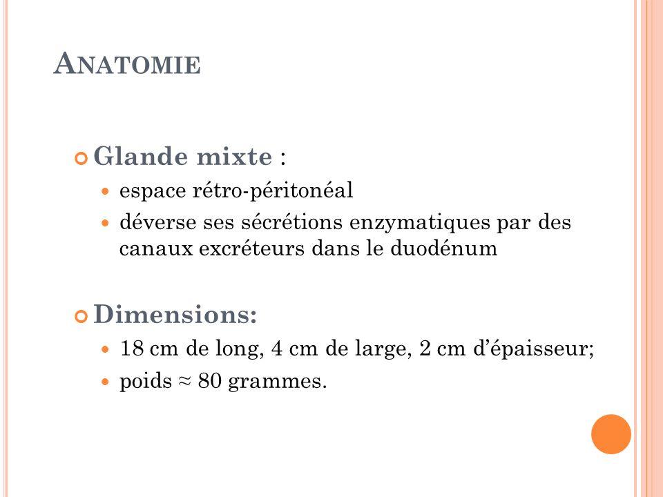 Anatomie Glande mixte : Dimensions: espace rétro-péritonéal