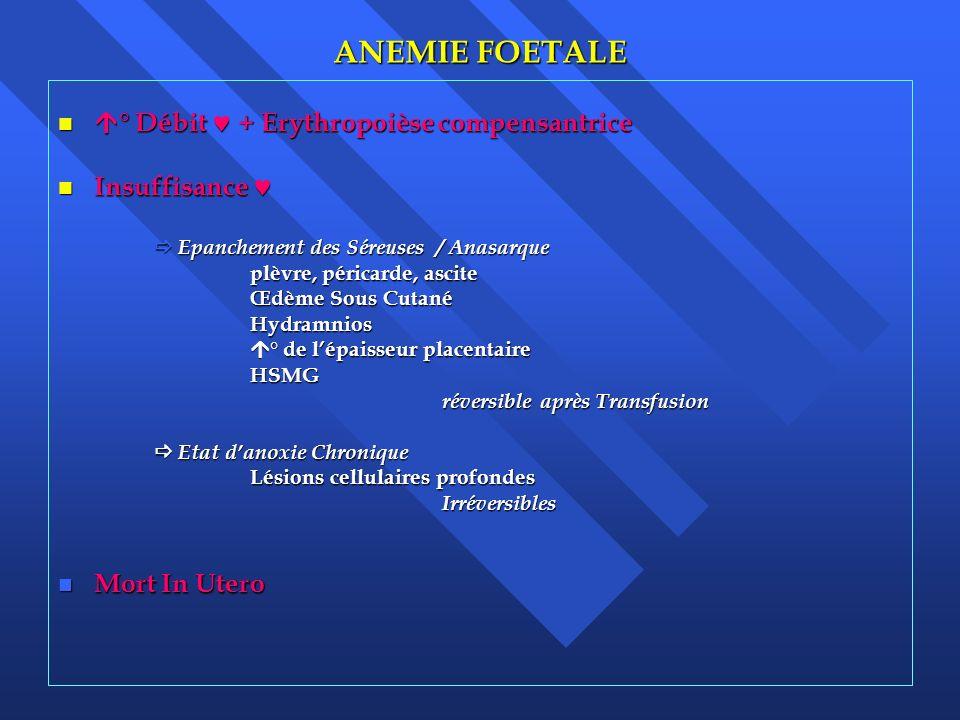 ANEMIE FOETALE ° Débit  + Erythropoièse compensantrice