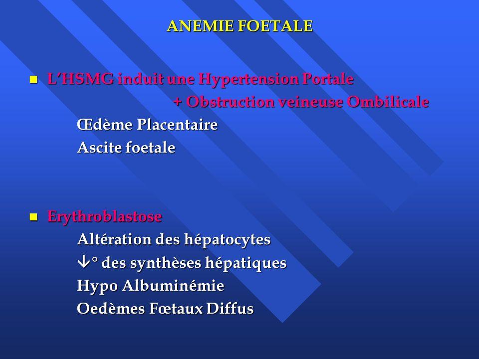 L'HSMG induit une Hypertension Portale