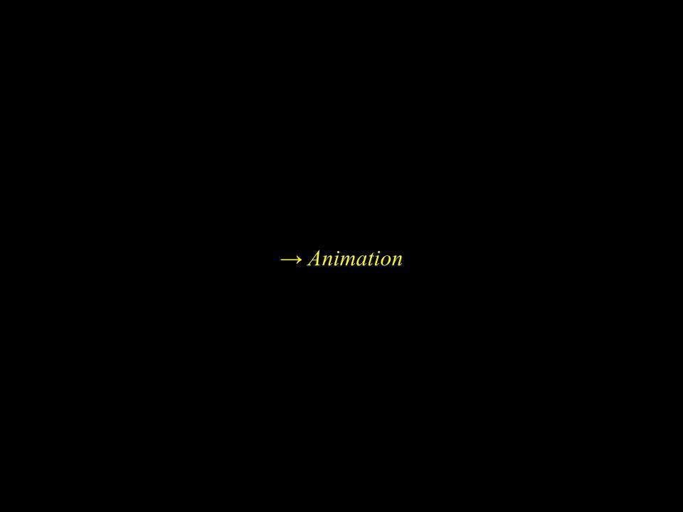 → Animation