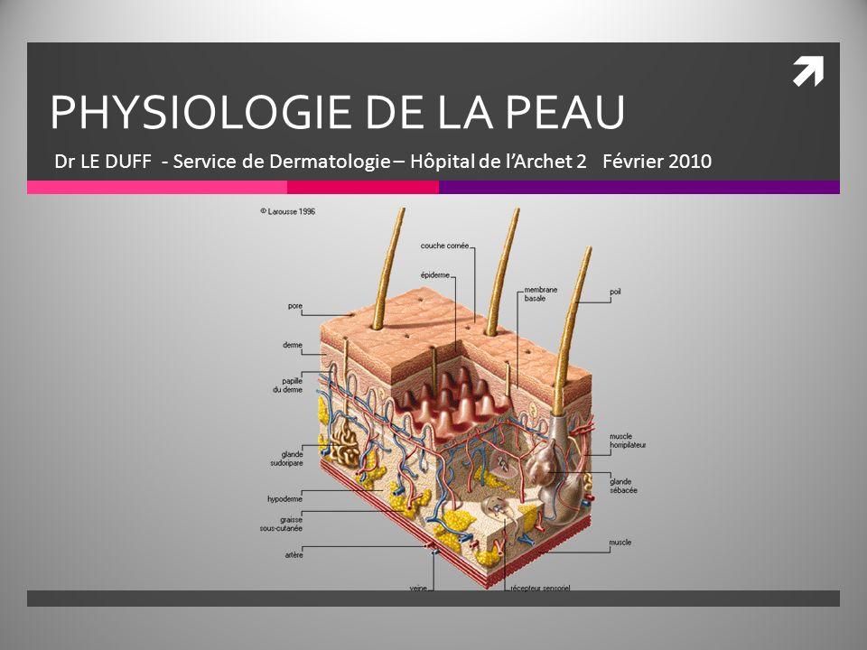 PHYSIOLOGIE DE LA PEAU Dr LE DUFF - Service de Dermatologie – Hôpital de l'Archet 2 Février 2010