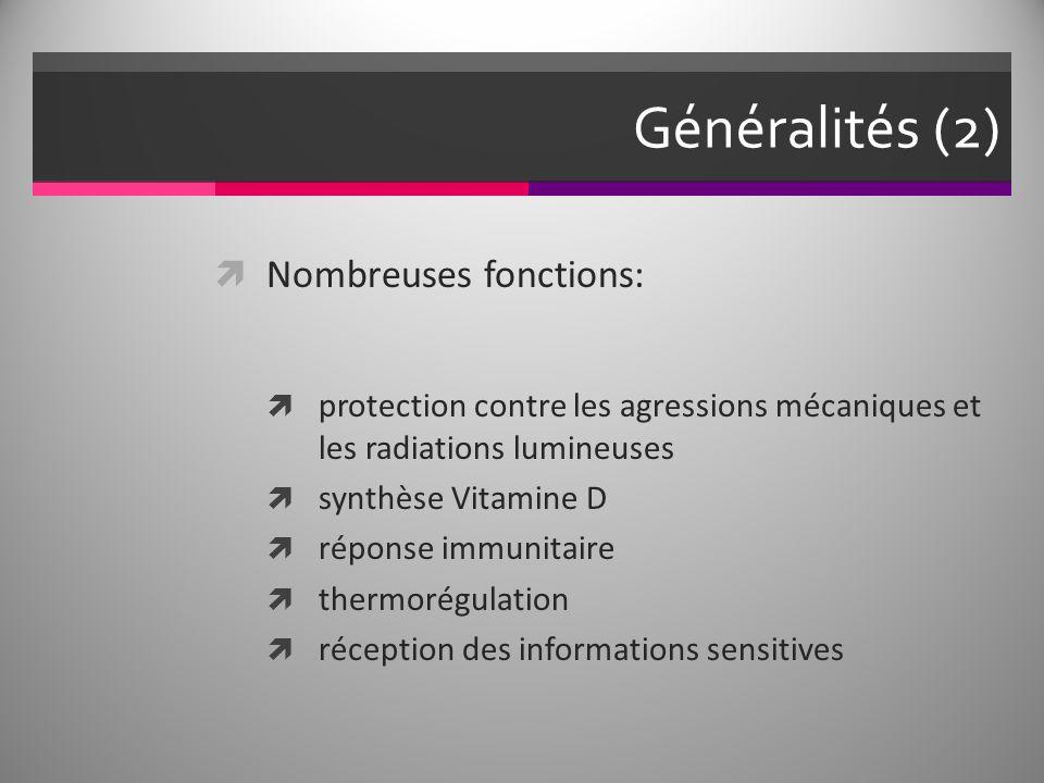 Généralités (2) Nombreuses fonctions: