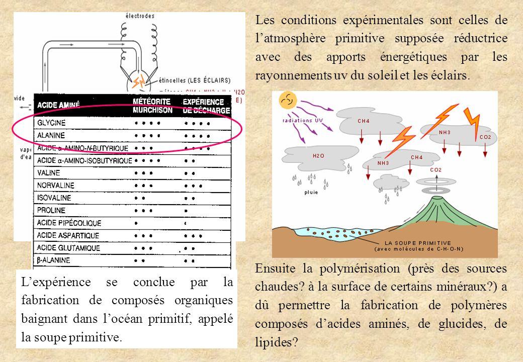 Les conditions expérimentales sont celles de l'atmosphère primitive supposée réductrice avec des apports énergétiques par les rayonnements uv du soleil et les éclairs.