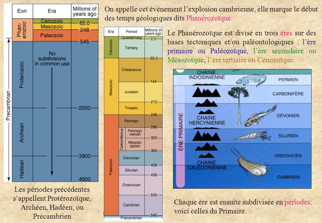 Les périodes précédentes s'appellent Protérozoïque, Archéen, Hadéen, ou Précambrien