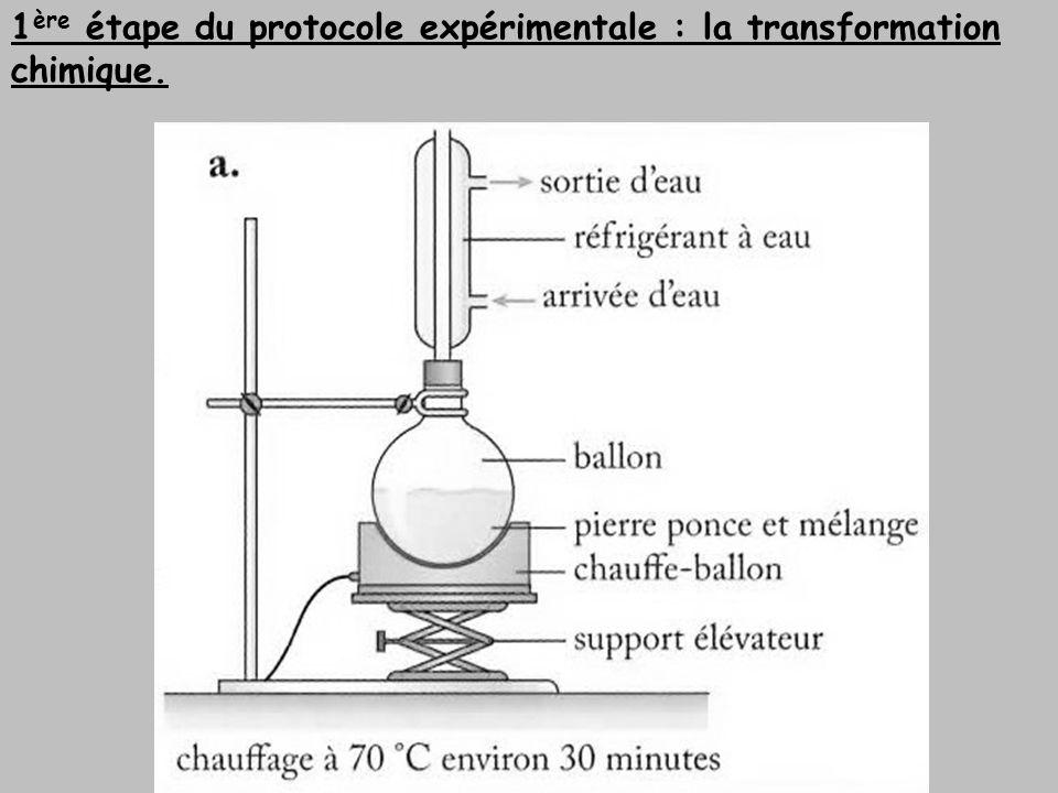 1ère étape du protocole expérimentale : la transformation chimique.