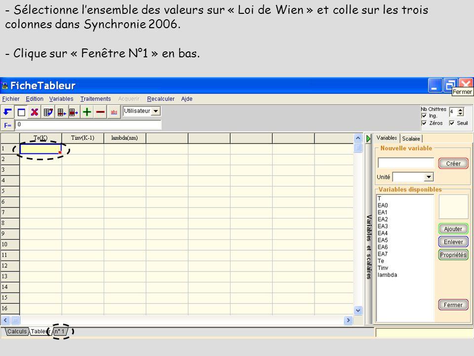 - Sélectionne l'ensemble des valeurs sur « Loi de Wien » et colle sur les trois colonnes dans Synchronie 2006.