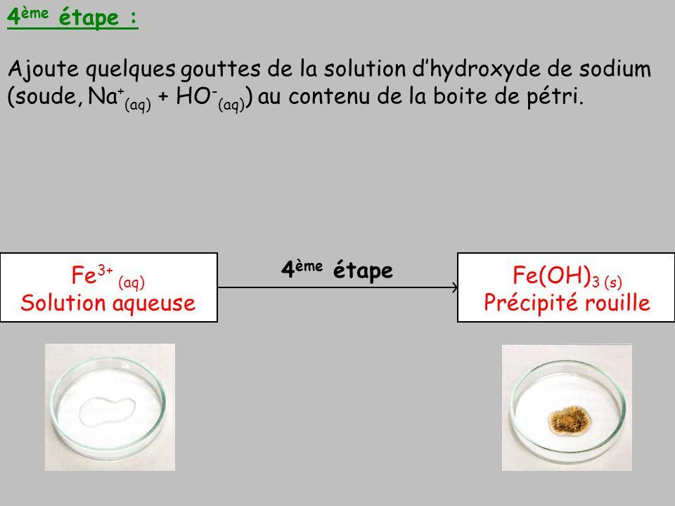 4ème étape : Ajoute quelques gouttes de la solution d'hydroxyde de sodium (soude, Na+(aq) + HO-(aq)) au contenu de la boite de pétri.