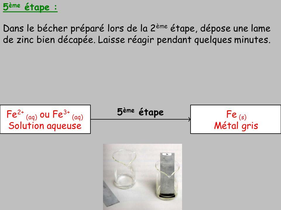 5ème étape : Dans le bécher préparé lors de la 2ème étape, dépose une lame de zinc bien décapée. Laisse réagir pendant quelques minutes.