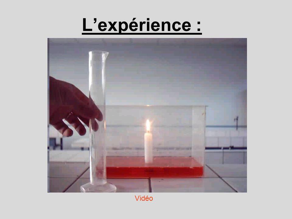 L'expérience : Vidéo