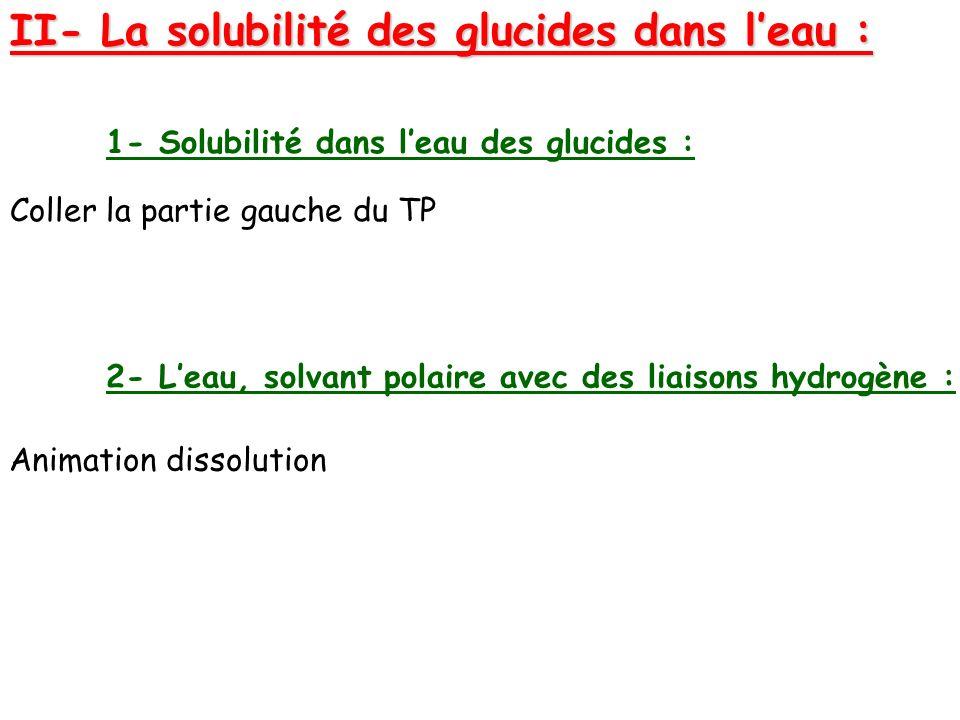 II- La solubilité des glucides dans l'eau :