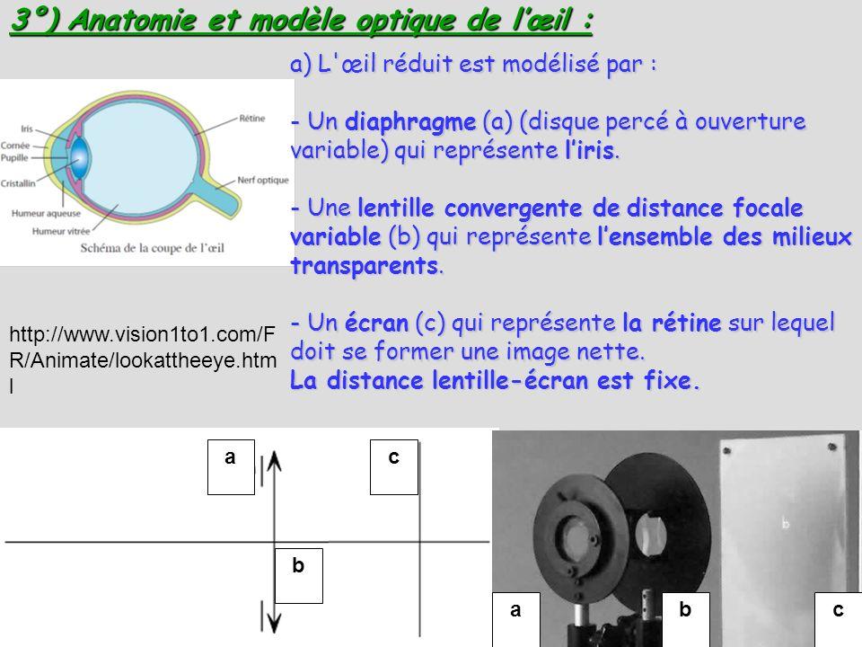 3°) Anatomie et modèle optique de l'œil :