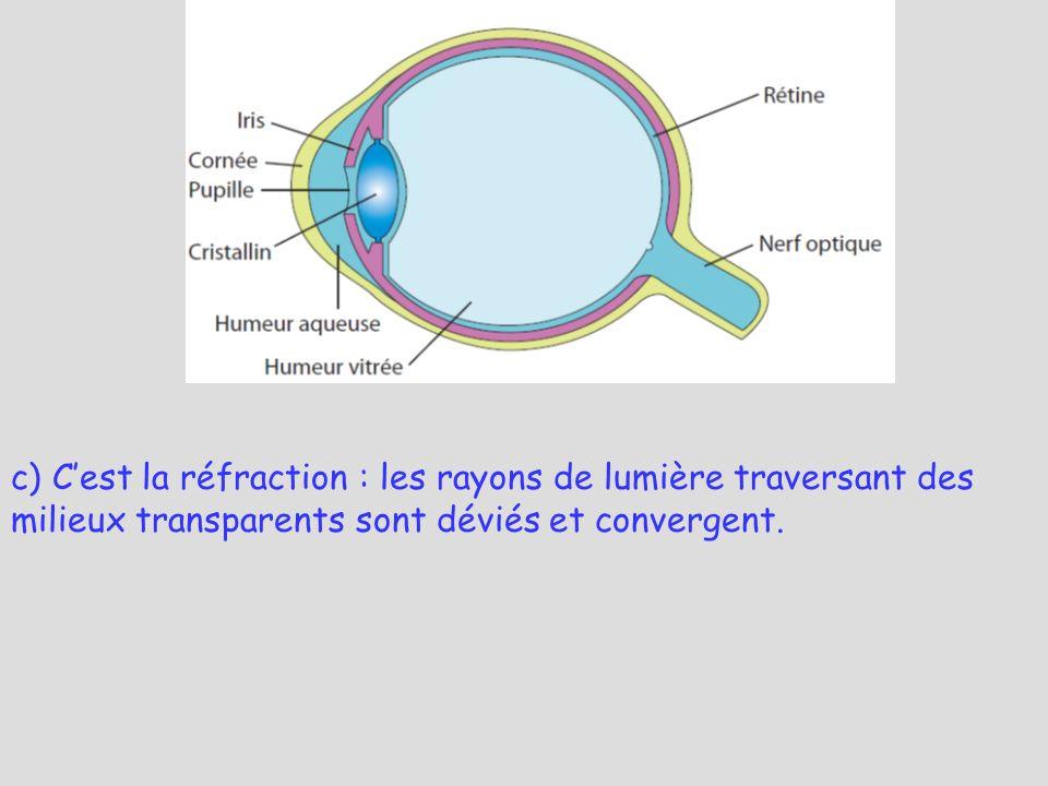 c) C'est la réfraction : les rayons de lumière traversant des milieux transparents sont déviés et convergent.