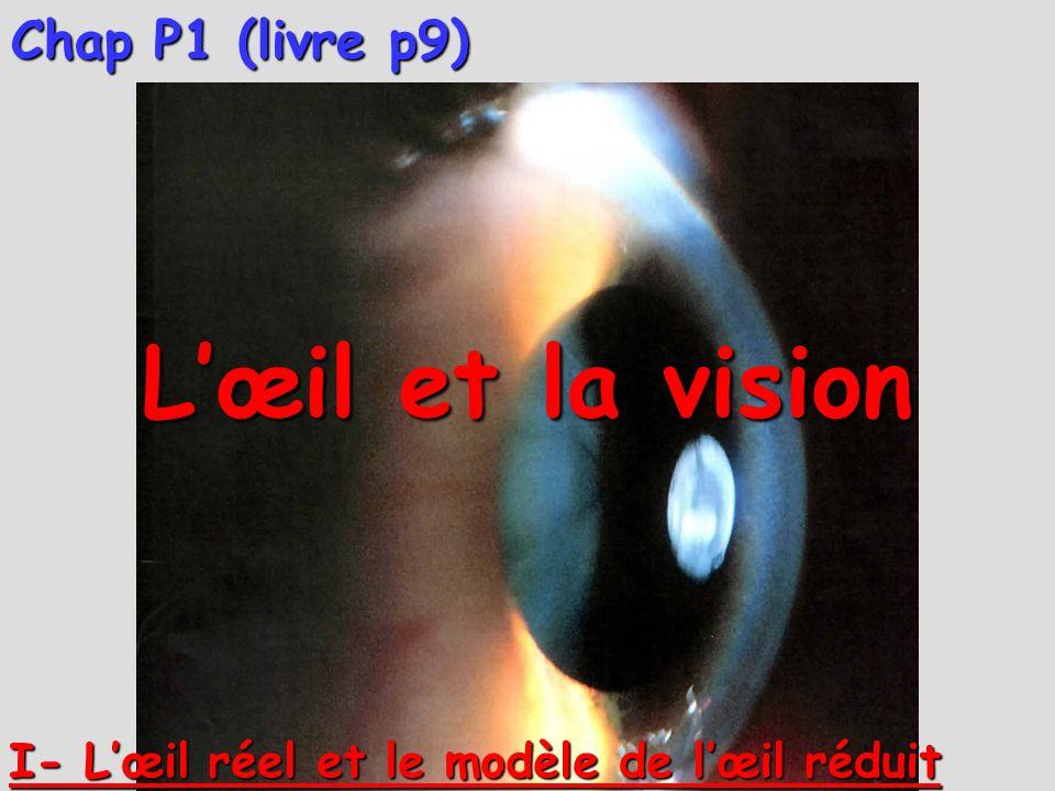 L'œil et la vision Chap P1 (livre p9)