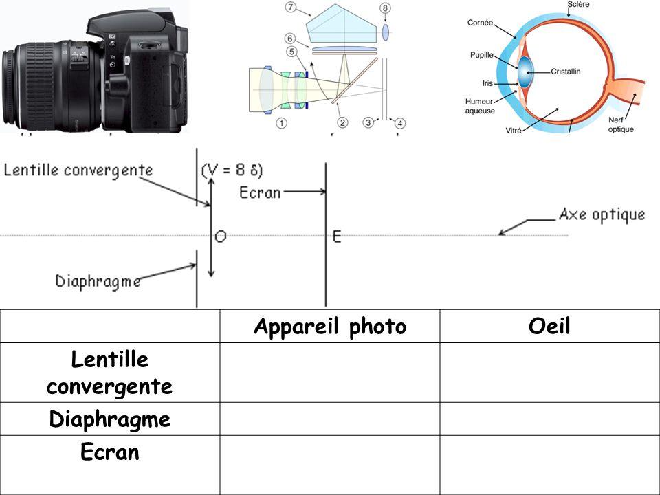 Appareil photo Oeil Lentille convergente Diaphragme Ecran