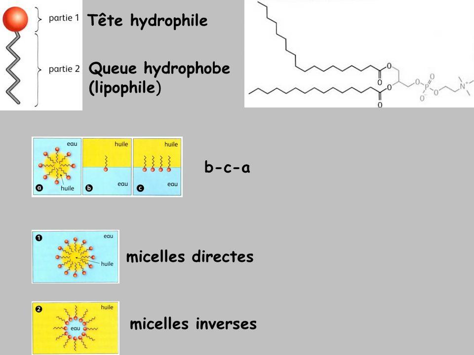 Tête hydrophile Queue hydrophobe (lipophile) b-c-a micelles directes micelles inverses