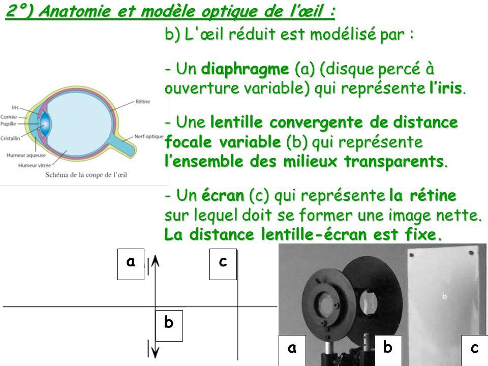 2°) Anatomie et modèle optique de l'œil :