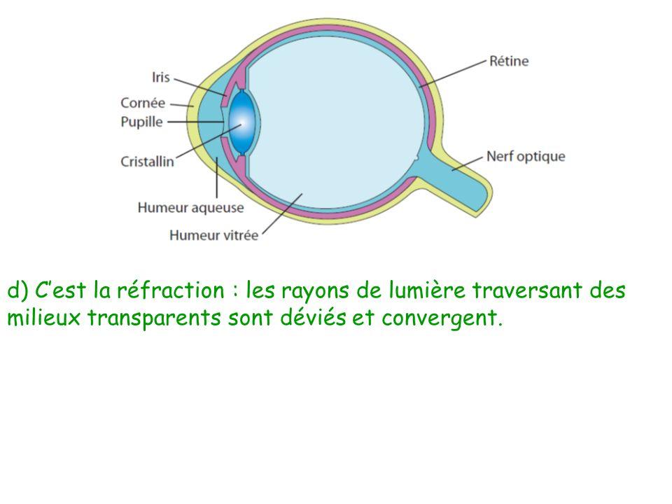 d) C'est la réfraction : les rayons de lumière traversant des milieux transparents sont déviés et convergent.