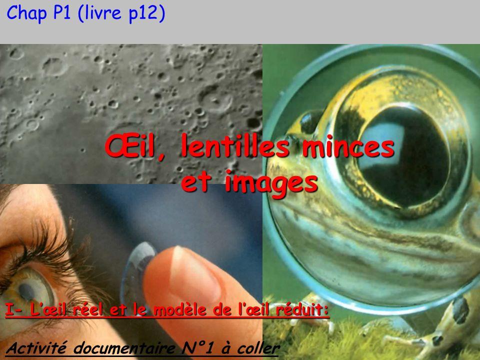 Œil, lentilles minces et images