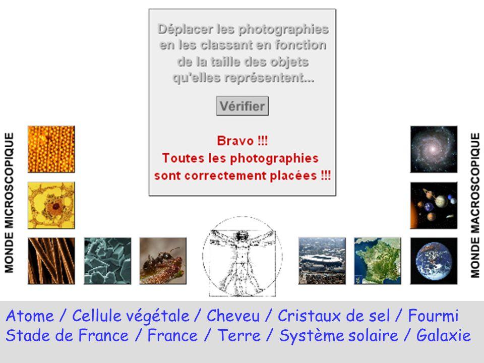 Atome / Cellule végétale / Cheveu / Cristaux de sel / Fourmi Stade de France / France / Terre / Système solaire / Galaxie