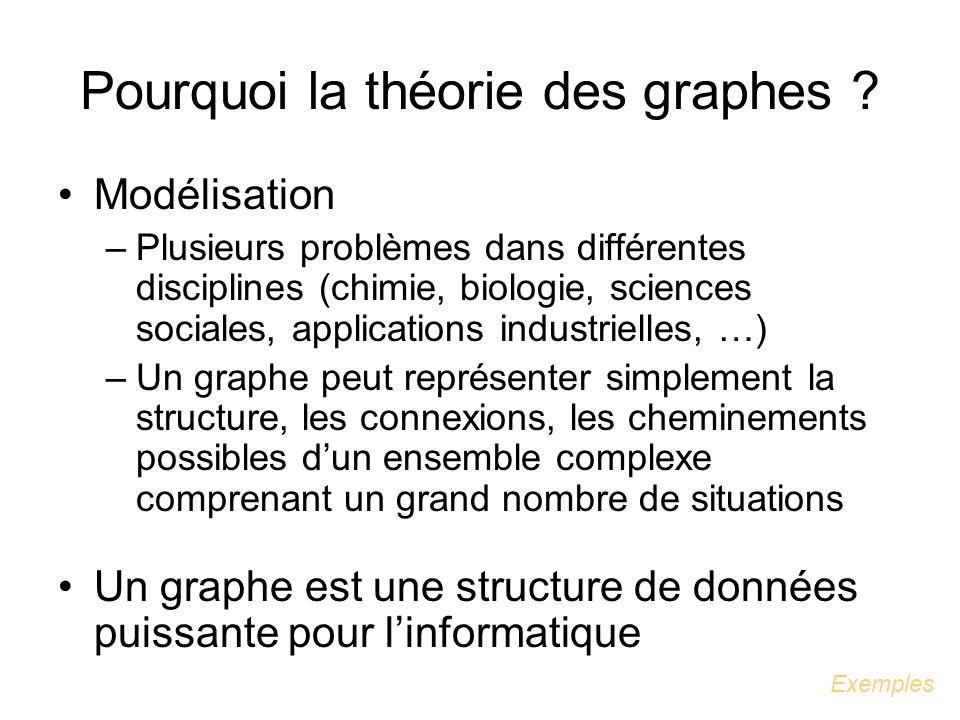 Pourquoi la théorie des graphes
