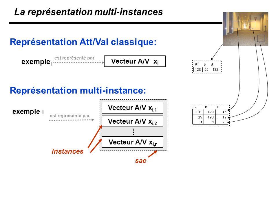 La représentation multi-instances