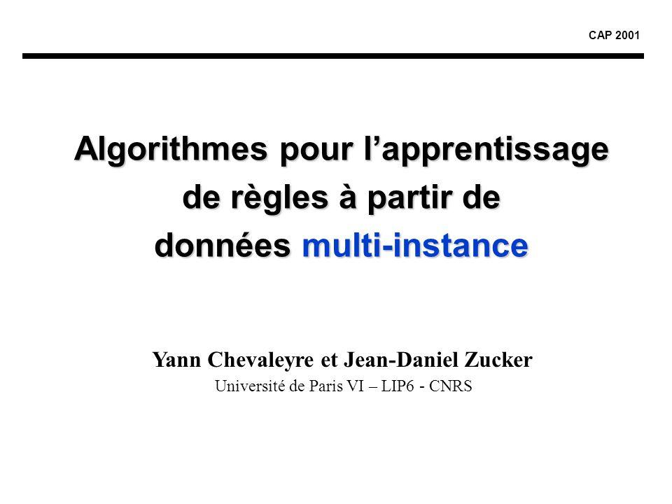 Algorithmes pour l'apprentissage de règles à partir de données multi-instance