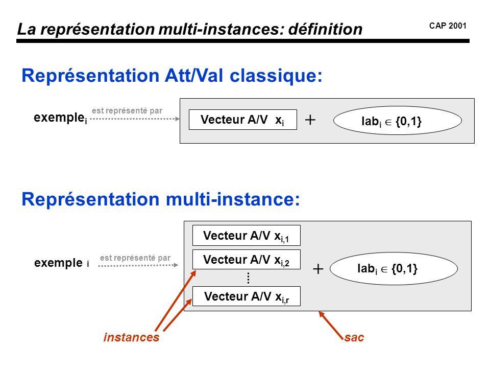La représentation multi-instances: définition