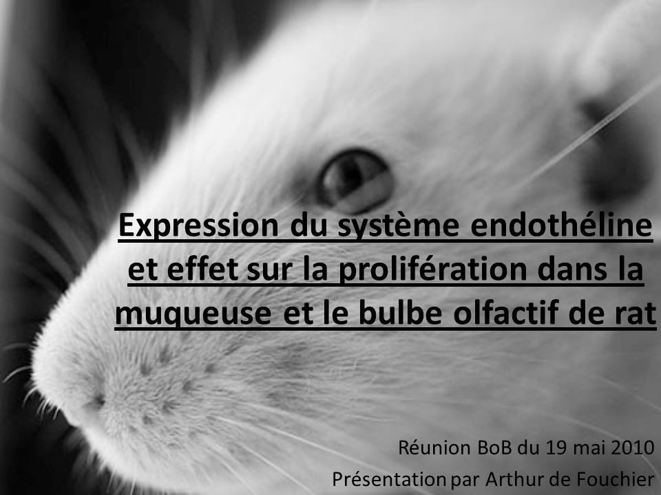 Réunion BoB du 19 mai 2010 Présentation par Arthur de Fouchier