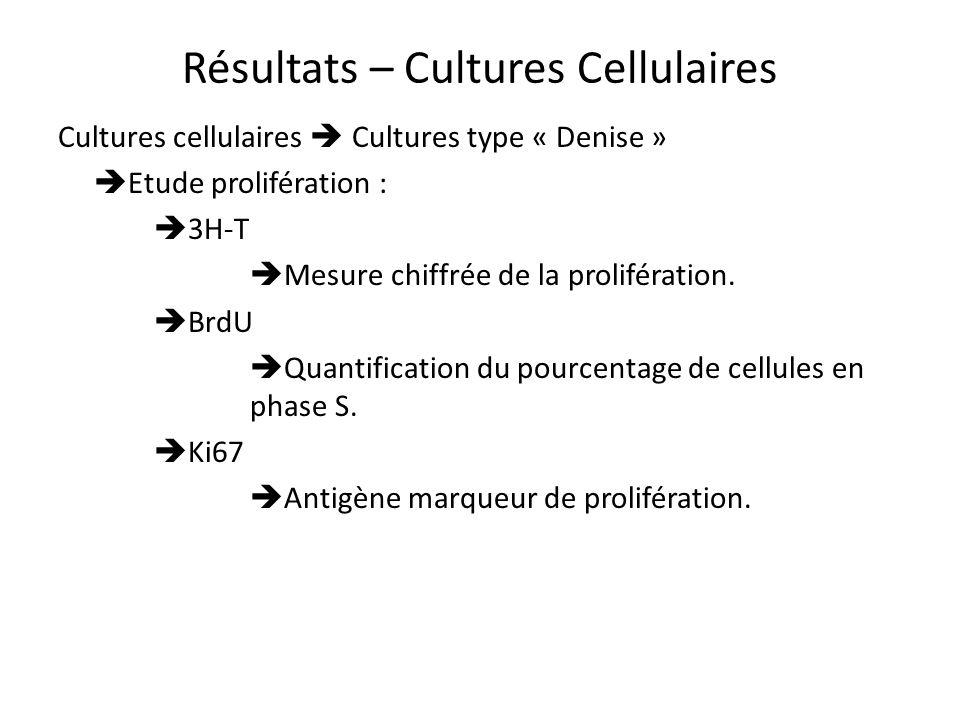 Résultats – Cultures Cellulaires