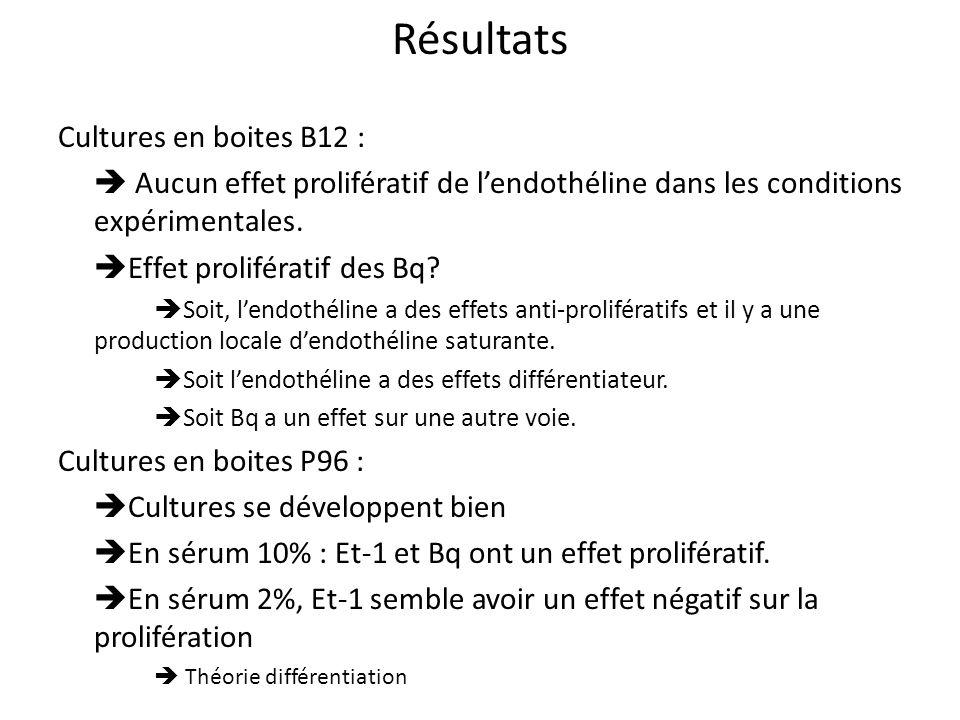Résultats Cultures en boites B12 :