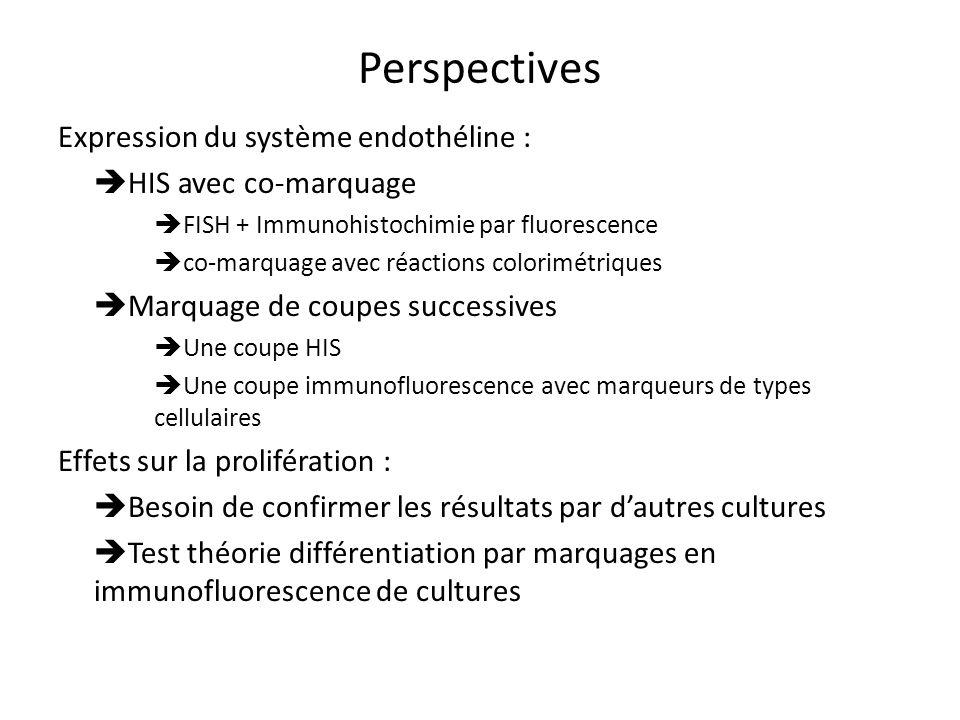 Perspectives Expression du système endothéline : HIS avec co-marquage