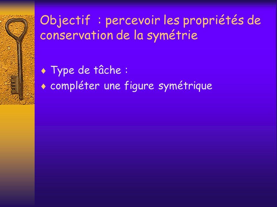 Objectif : percevoir les propriétés de conservation de la symétrie