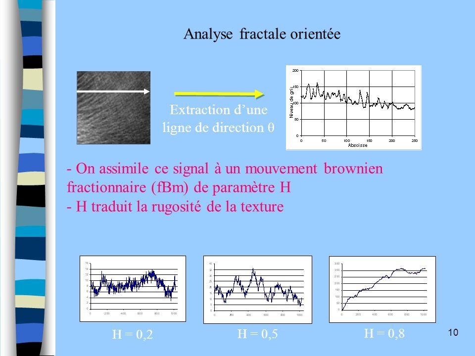 Analyse fractale orientée