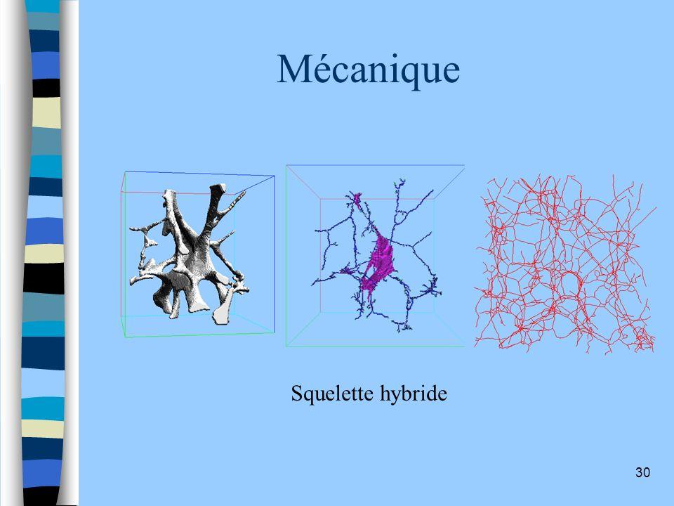 Mécanique Squelette hybride