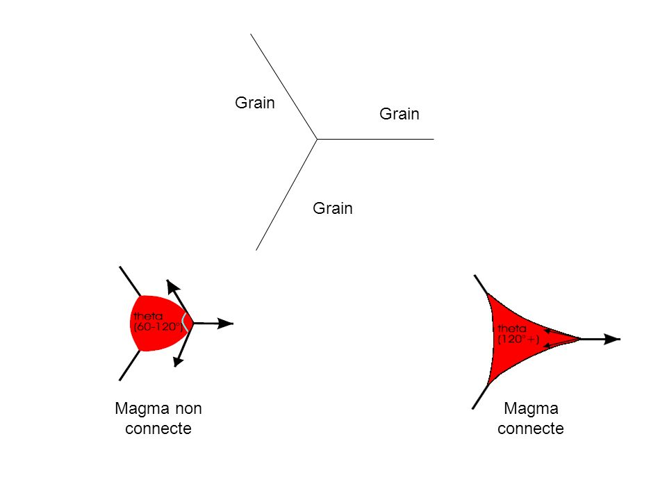 Grain Grain Grain Magma non connecte Magma connecte
