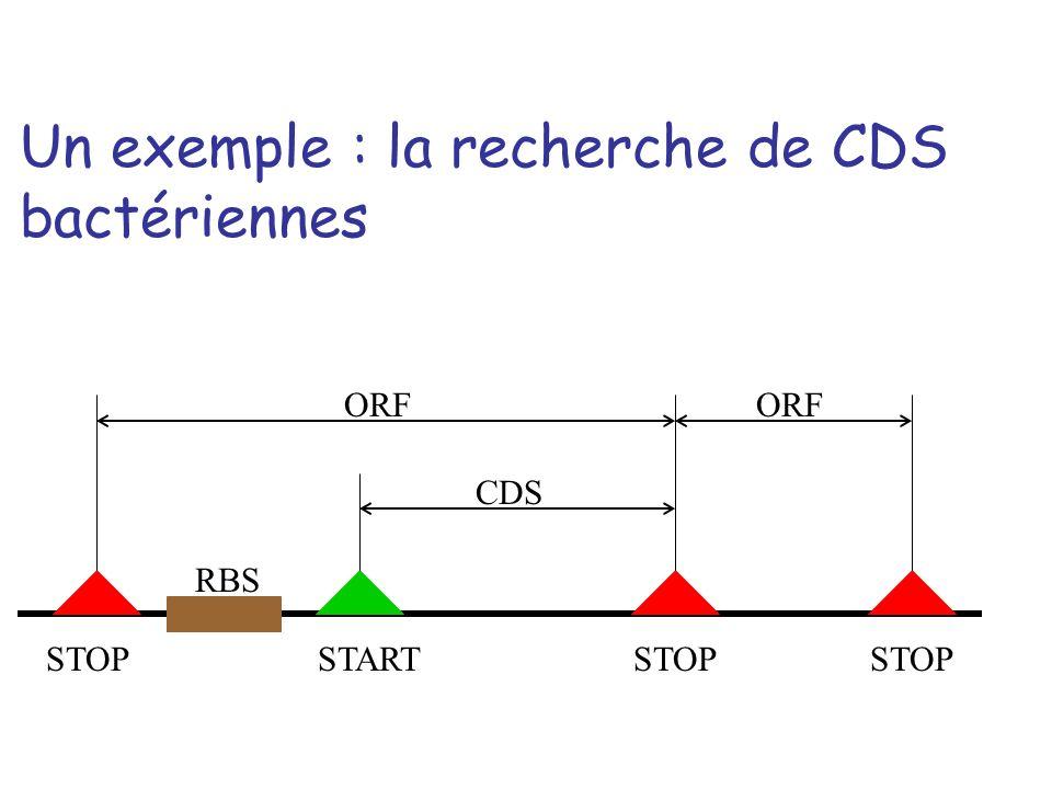 Un exemple : la recherche de CDS bactériennes