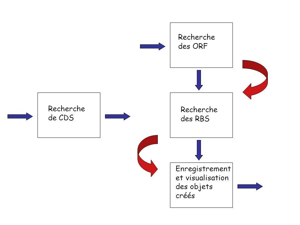 Recherche des ORF Recherche des RBS. Enregistrement et visualisation des objets créés.