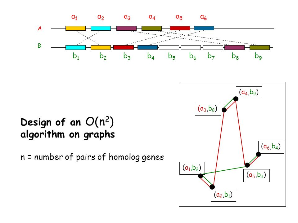 Design of an O(n2) algorithm on graphs
