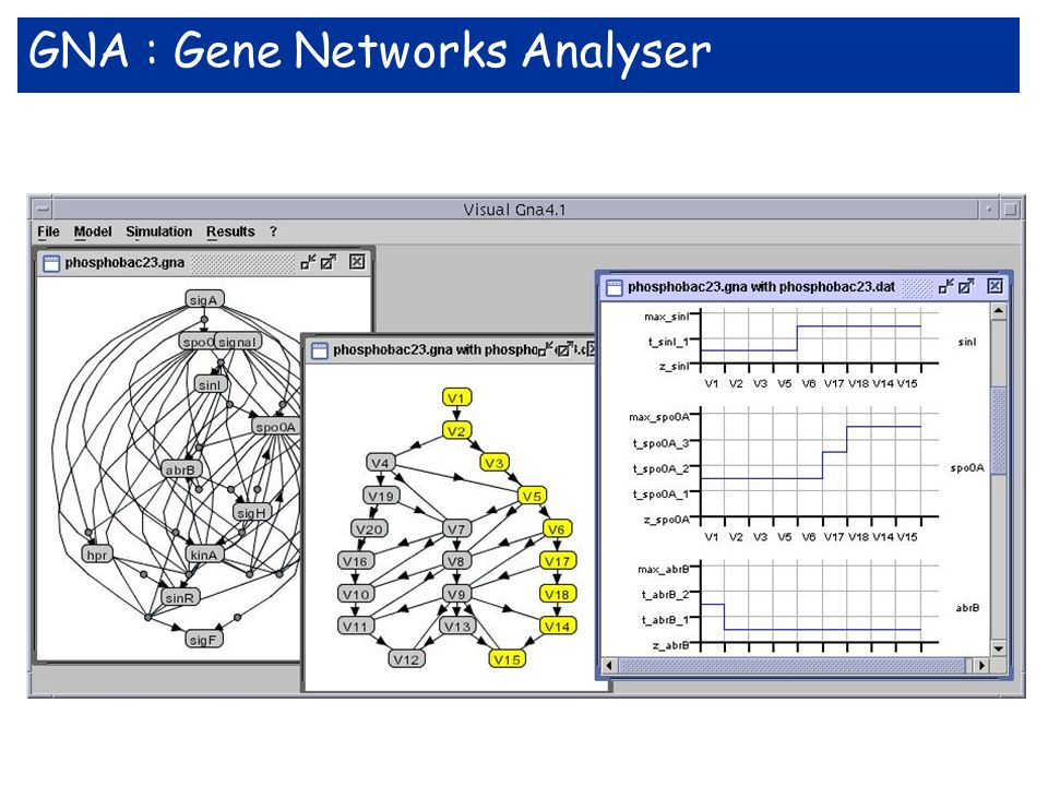 GNA : Gene Networks Analyser