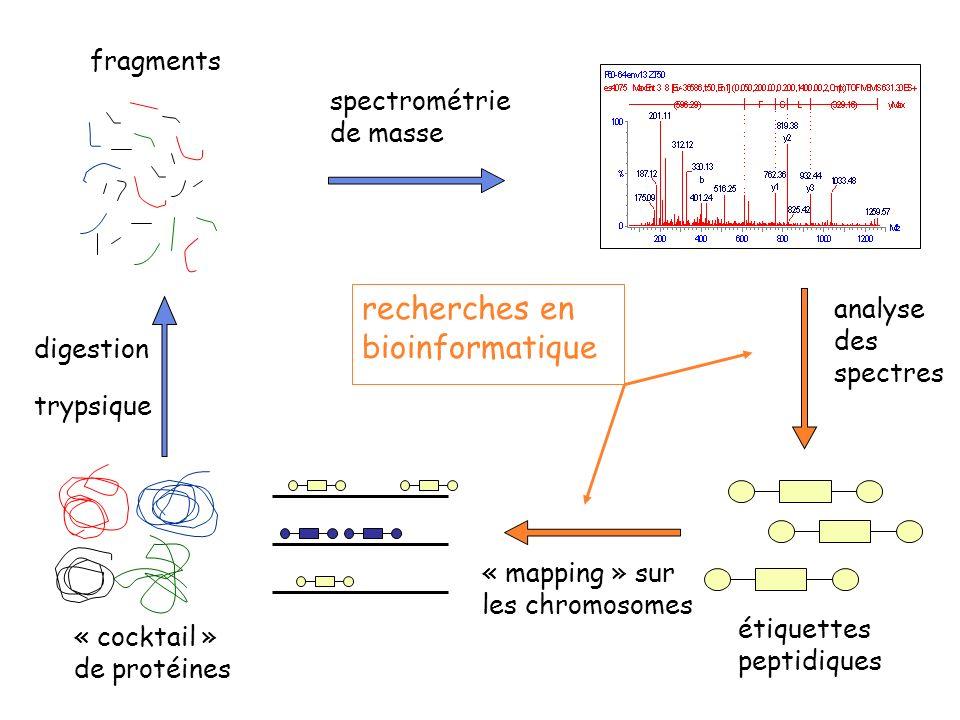 recherches en bioinformatique