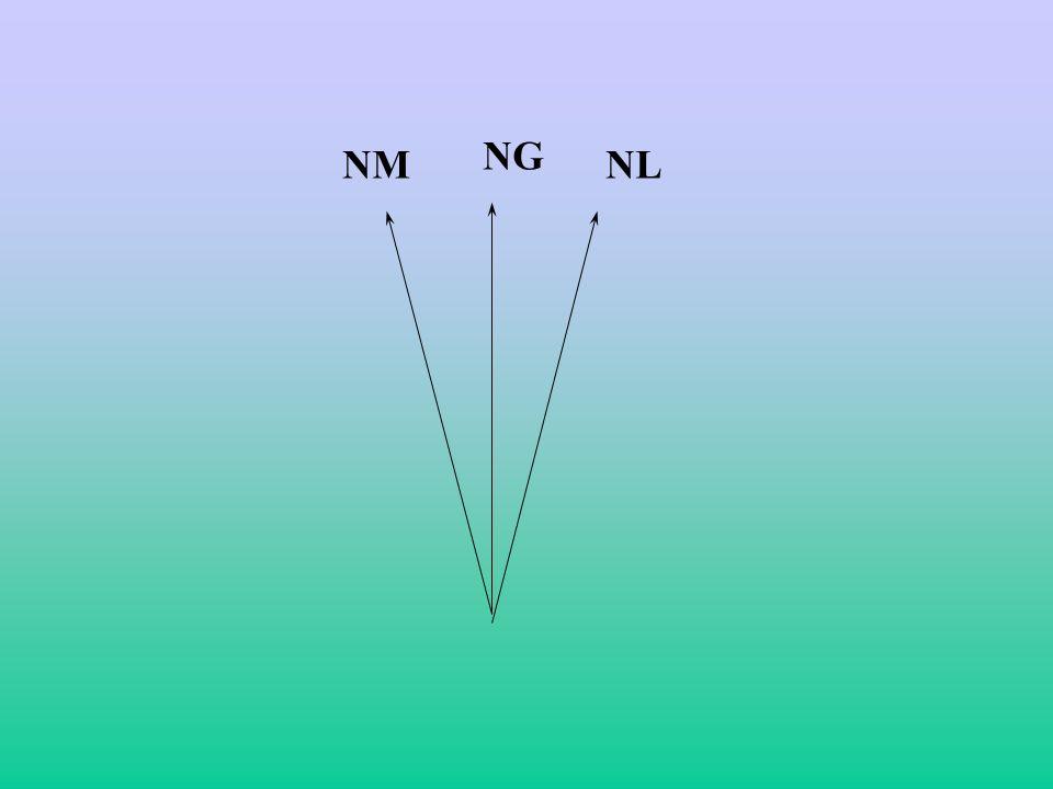 NG NM NL