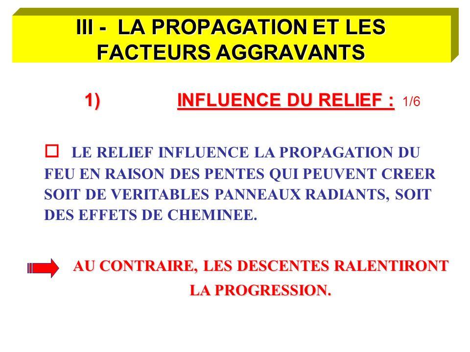 III - LA PROPAGATION ET LES FACTEURS AGGRAVANTS