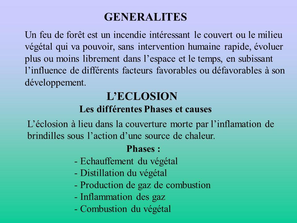 GENERALITES L'ECLOSION