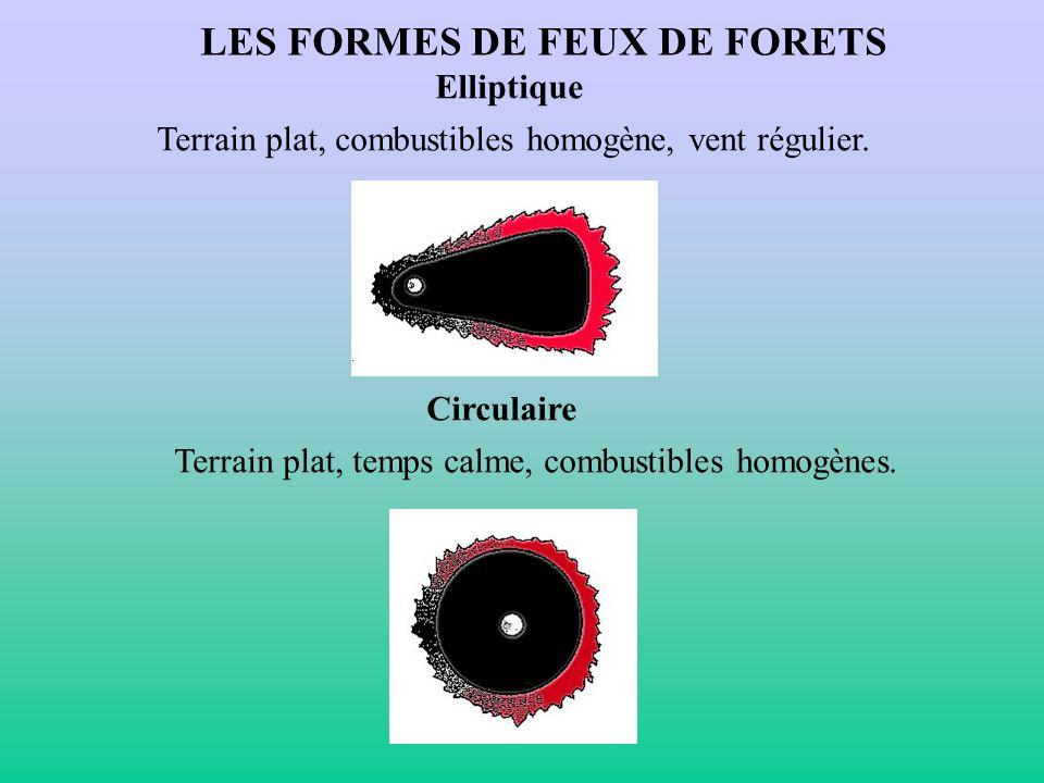 LES FORMES DE FEUX DE FORETS