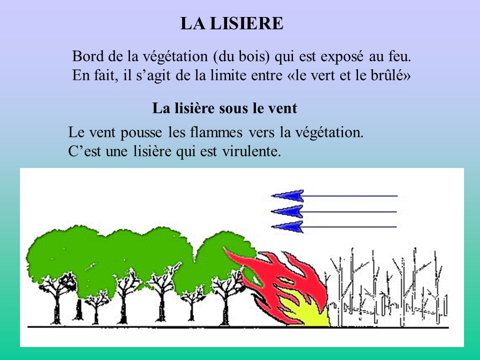 LA LISIERE Bord de la végétation (du bois) qui est exposé au feu.